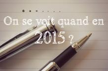 Rencontre 2015 Marie Vareille auteur